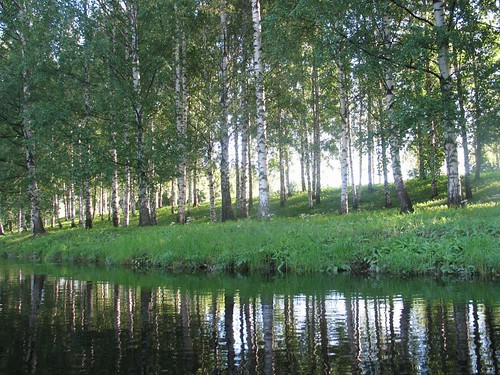 Seinäjoki, summer