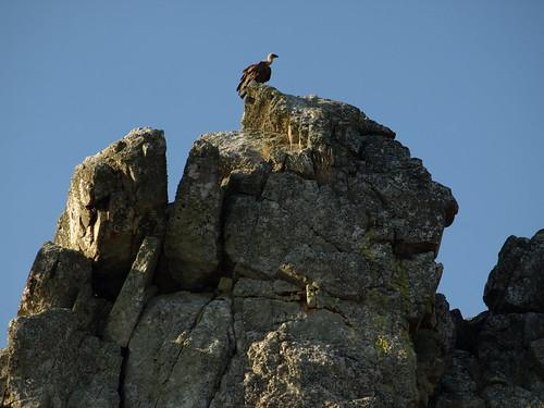 Descubrir Extremadura