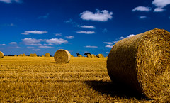 Hay Bales (stevetiler) Tags: sky clouds landscape wideangle hay bales billericay canon40dd