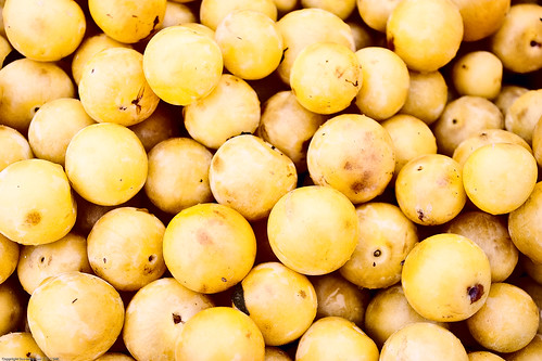 Mirabelle Plum, Farmers Market / 20090828.10D.51934.P1 / SML (by See-ming Lee 李思明 SML)