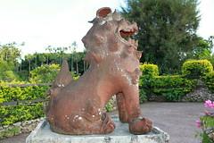 XT1i (299) (Goose Studios) Tags: dog lion folklore okinawa mythology shishi shisa southeastbotanicalgardens shisaa