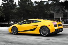 IMG_7904 (alexDPhotography - Alex Diaconou) Tags: california motion black alex car yellow canon photography drive is action automotive super exotic diablo panning lamborghini 70200 f28 supercar rolling vt roadster murcielago 24105 superleggera 40d alexdphotography diaconou