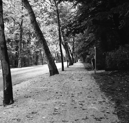 Amsterdam Vondel Park Oudzuid Hasselblad