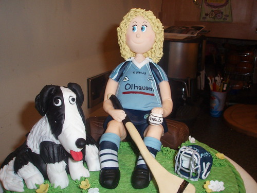 Dublin Camogie Player 21st Birthday Cake by Murfie68