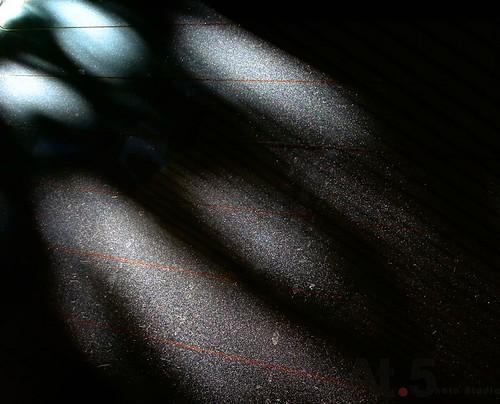 光的表情00259光_DSCN0316.jpg