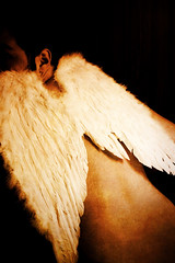 losing my feathers / take 2 (ion-bogdan dumitrescu) Tags: man male angel back wings looking feathers feather icarus bitzi jatayu ibdp mg0744edit findgetty ibdpro wwwibdpro ionbogdandumitrescuphotography