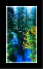 Where Dreams and Nature Meet..... (heavenagain) Tags: california blue trees green nature water reflections peaceful dreams sensational serene magical softlighting