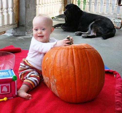 Pumpkin, 10-25-09