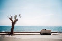 , (Benedetta Falugi) Tags: film analog 32mm sea mare lungomare autaut tuscany wwwbenedettafalugicom believeinfilm analogphotography