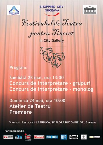 23–24 Mai 2009 » Festivalul de Teatru Bucovina