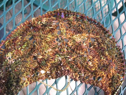 Leaf Lace Shawl - 6/7/09