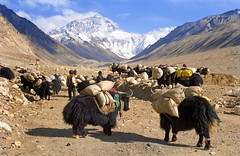 Rhongbuk Mount Everest or Jomo Langma   (reurinkjan) Tags: 2002 tibet everest sagarmatha rongbuk chomolungma 8848m jomolangma utsang tibetanlandscape tingricounty  janreurink