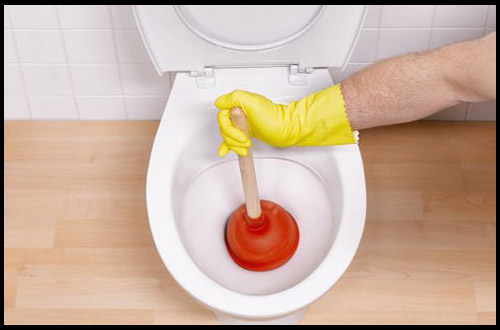 toilet-plunger