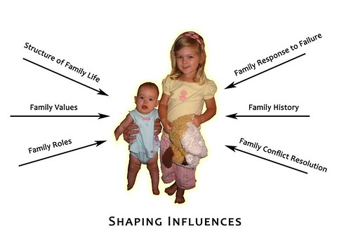 Shaping Influences Diagram