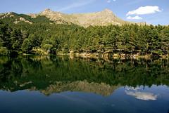 Laguna (El Templario) Tags: trees lake reflection water landscape lago mirror agua arboles paisaje lagoon espejo reflejo absolutelystunningscapes