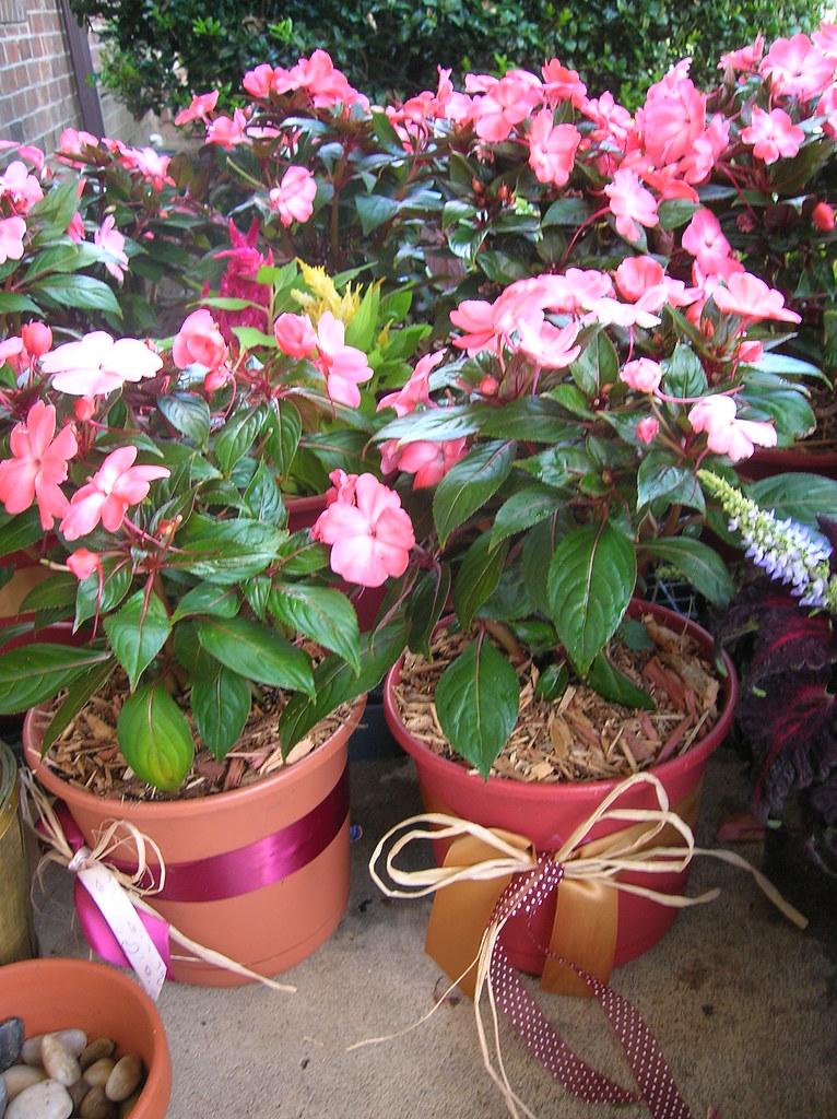 Flower pots/Reception Centerpieces