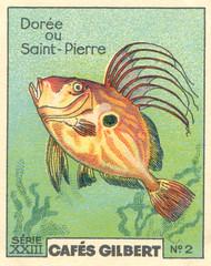 gilbert poissons 2
