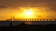 The resund Bridge in the midsummer sun, Malm (Gauss2) Tags: bridge sunset midsummer sweden olympus malm malmo oresund resund oresundbridge bunkeflostrand resundbridge e520