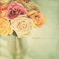 R O S E S (Shana Rae {Florabella Collection}) Tags: pink stilllife orange vintage michael nikon pastel cream 85mm husband happybirthday vase d700 shanarae florabellatextures softdreamyethereal