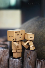 (sndy) Tags: sanfrancisco toy toys box figure figurine sindy kaiyodo yotsuba danbo revoltech danboard   amazoncomjp