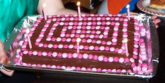 Meredith's 2007 Birthday Cake