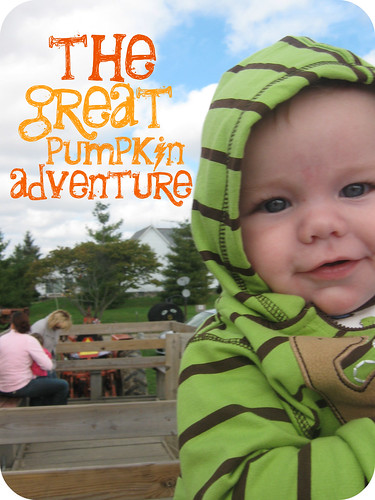 pumpkin adventure