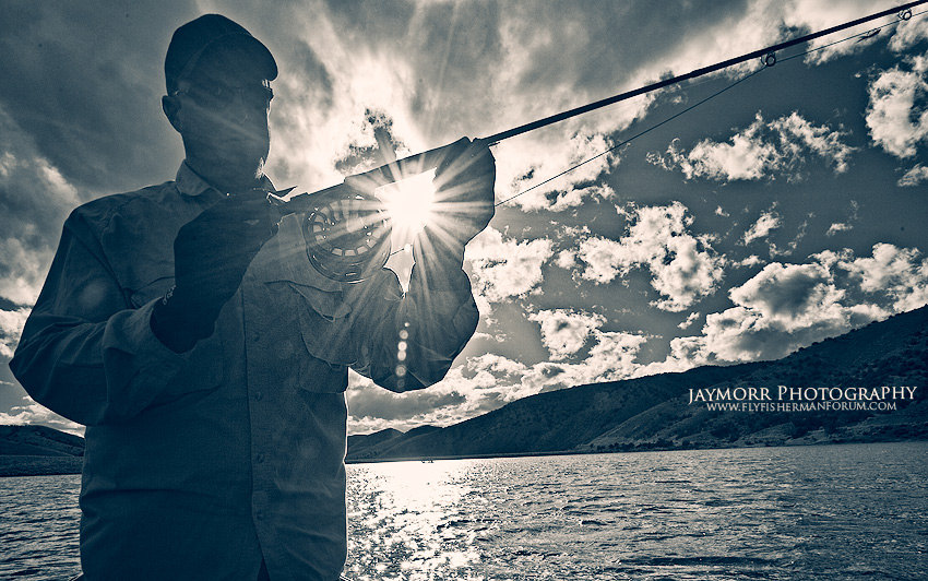 Angler Sun Burst