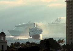 Oasis of the Seas and smaller cruise ship (Monica R.) Tags: ships fortlauderdale royalcaribbean cruiseships porteverglades oasisoftheseas
