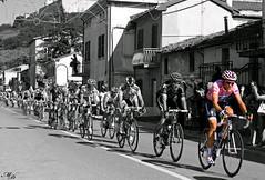 La Maglia Rosa (e vincitore del giro d'italia) (David Maccaroni) Tags: pink blackandwhite sport canon rosa bicycles da desaturation ciclismo soe pinkshirt biancoenero eventi biciclette fotografare magliarosa desaturazione canon400d eventidafotografare giroditalia2011 lamagliarosa