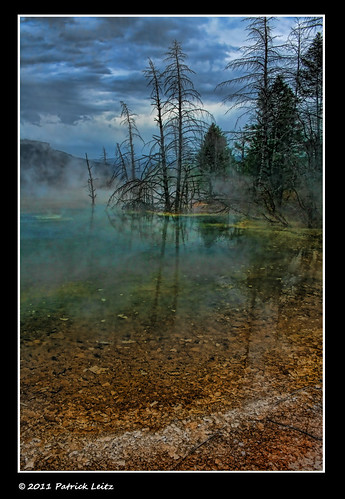 Yellowstone National Park - Wyoming - USA