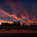 fleeting sunrise