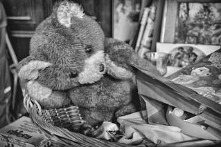 Sweet and lovely Teddy Bear