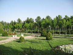 (Ali Mirghaderi) Tags: park flowers flower green beauty persian iran persia ali iranian pars esfahan  irani           parsi           alimirghaderi imadmiral   mirghaderi