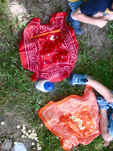 picnic cloths