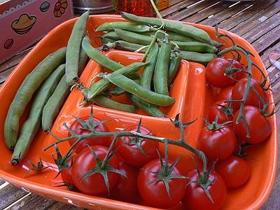 tomates, pois et fèves.jpg