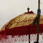 Red Tasseled Parasol thumbnail