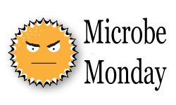 Microbe Monday