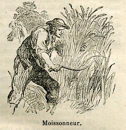 MOISSONNEUR-50