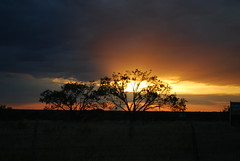 Texas Sunset Aglow (maorlando God kept us 2012 leaning on Him 2013) Tags: travel trees sunset usa nature clouds rural glow texas silhouettes creation browncounty texasscenes bangstx centralwesttexas