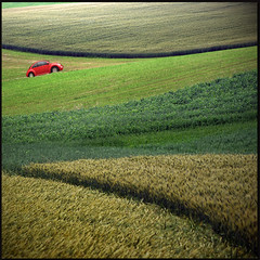 The red car (pixel_unikat) Tags: red green field car landscape meadow soe textured 500x500 bej vanagram ubej