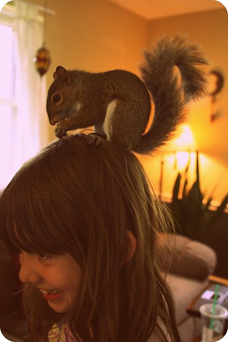 I've got a squirrel on my head! by you.