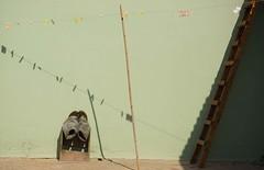 direzioni incrociate (kukussunasu) Tags: sardegna stagno pescatori marcedd