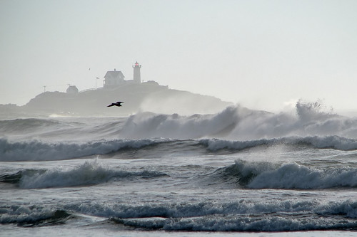 Surf and Nubble