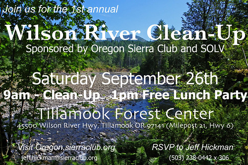 Wilson River Clean Up