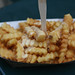 cheese fries at the amazing shake shack