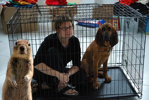 jail. (by ann-dabney)