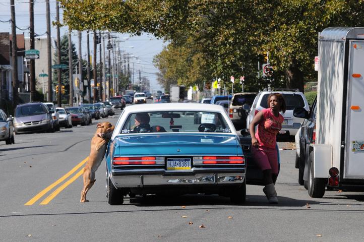 dog on drivers side_3049 web