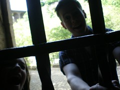 let us out!!!