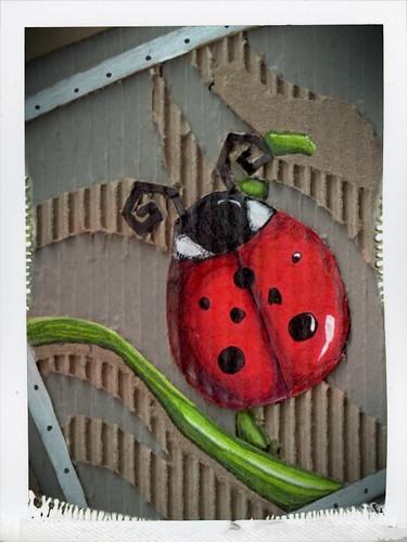Ladybird by helencarter1001