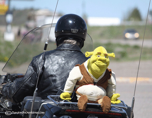 PAM_0010-wordless-wednesday-Shrek-rides-motorcycle